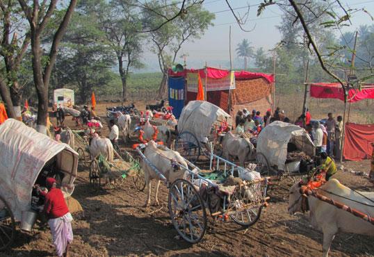 Chinchali-camp