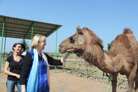 2015-11.IEN's India trip - Ingrid and camel Tracy at RBH (3)