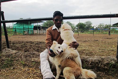 20160927-dog-shalirani
