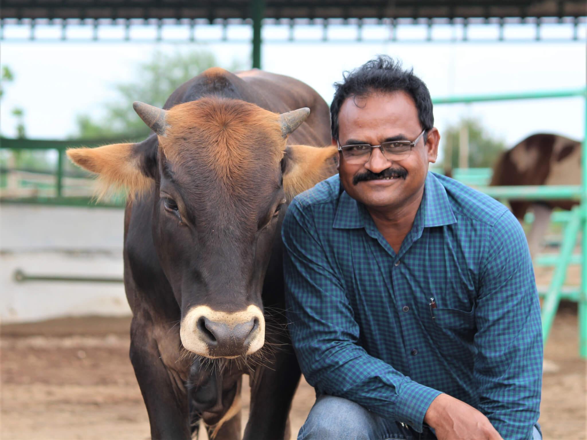 Dr. Chetan Yadav poses at the sanctuary with resident calf Mahadev.