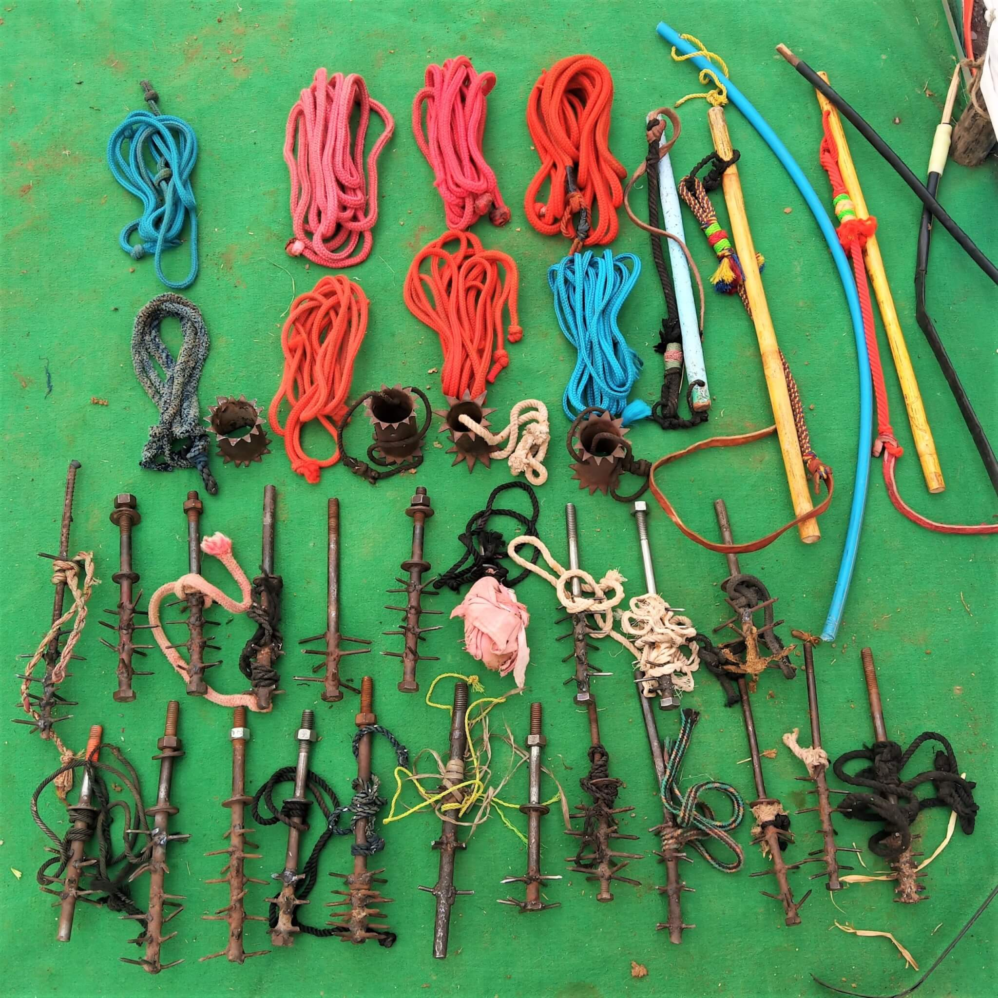 An assortment of confiscated whips, yoke spikes, and nose ropes lies on a blanket.