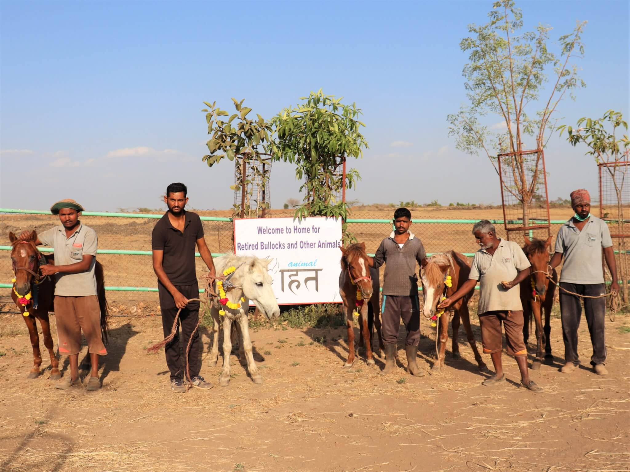 The five rescued ponies stand with staff and a sign welcoming them to Animal Rahat's sanctuary.