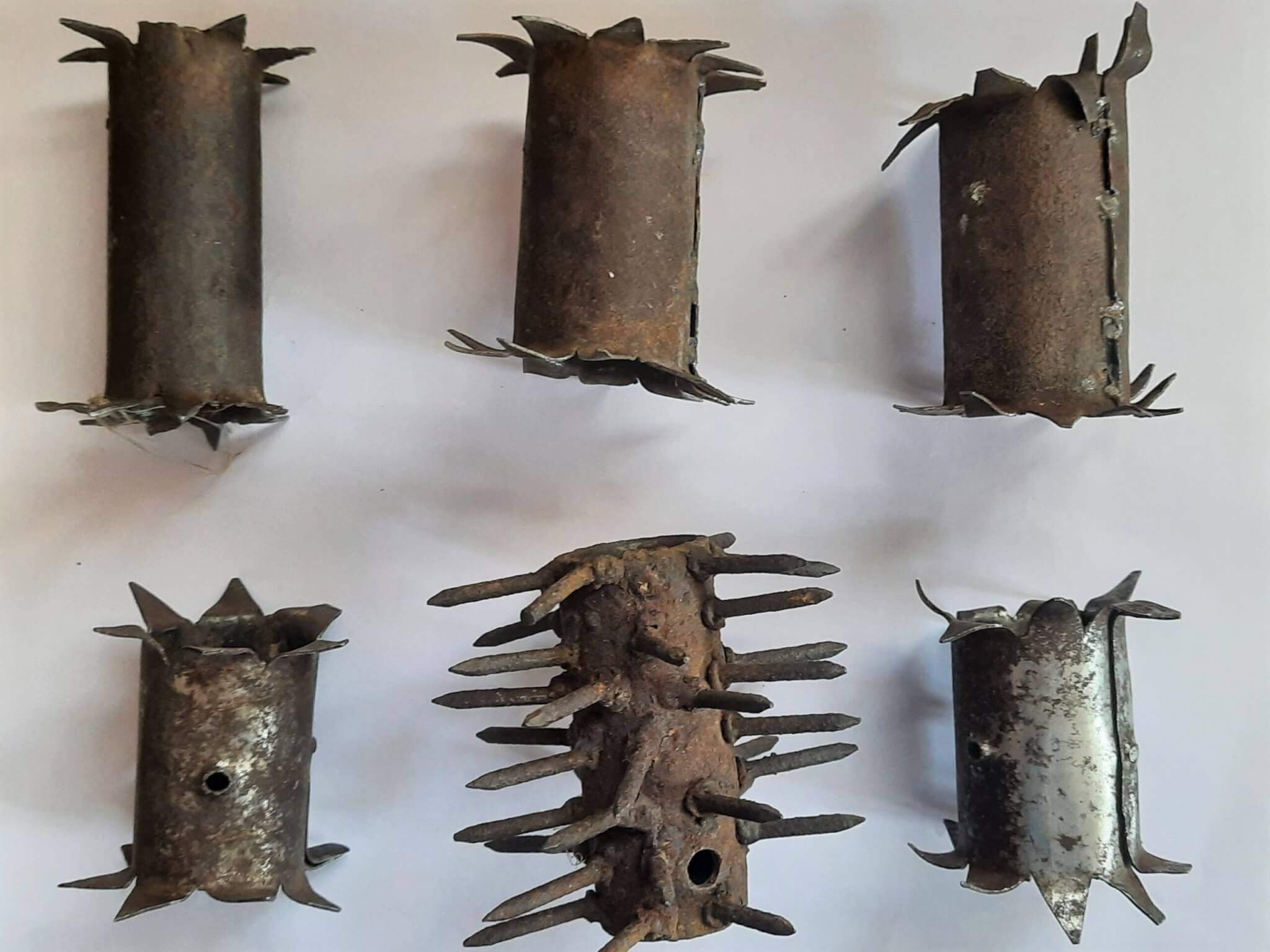 Pictured are six yoke spikes that Animal Rahat confiscated.