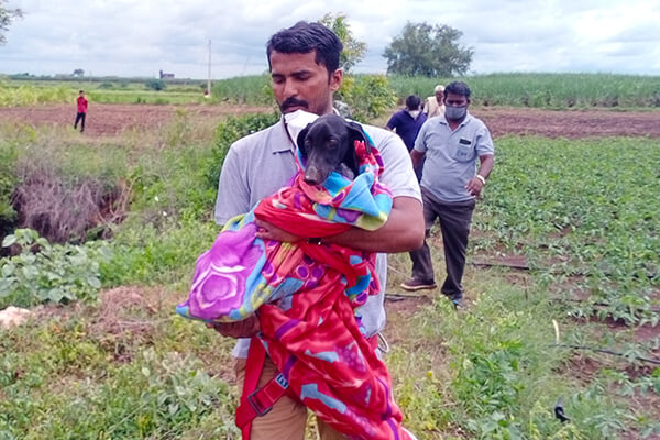After emerging from the well, Animal Rahat's rescue worker carries the dog away from the opening.